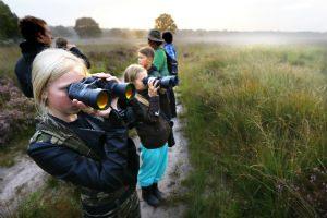 hoge-veluwe-national-park-netherlands